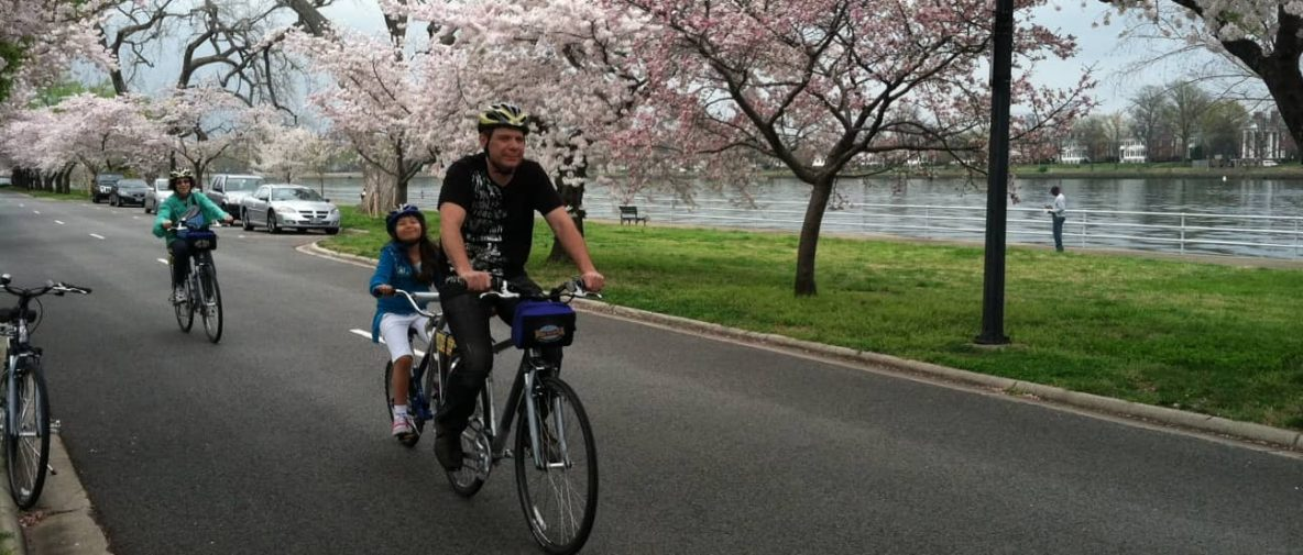 Blossoms by bike 3
