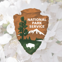 National Park Service Logo and Cherry Blossoms